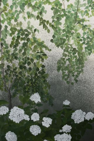 Hydrangea,and,Silver,Birch,in,the,Rain,Anne McKenzie
