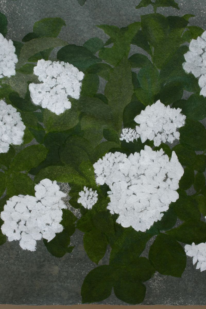 Hydrangea and Silver Birch in the Rain - product images  of