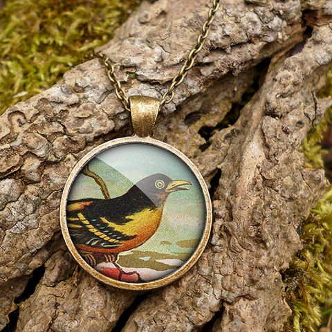 Affable,Bird,Large,Necklace,(TB03),jewellery, jewelry, handmade, brass, necklace, vintage, bird, glass, cabochon, steampunk, victorian