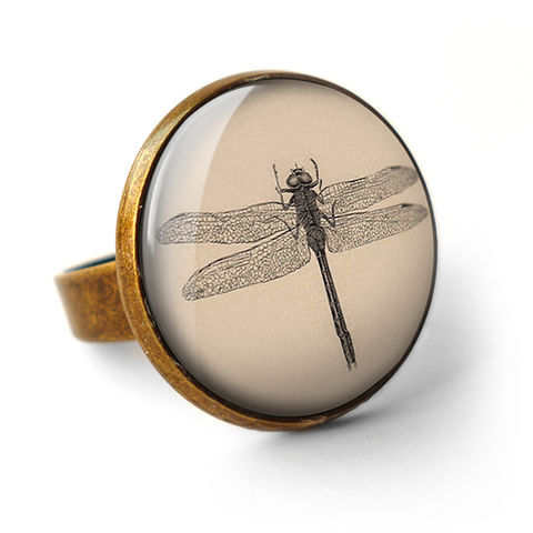 Vintage,Dragonfly,Ring,(ER03),jewellery, jewelry, handmade, brass, ring, vintage, dragonfly, insect, nature, glass, cabochon, steampunk, victorian
