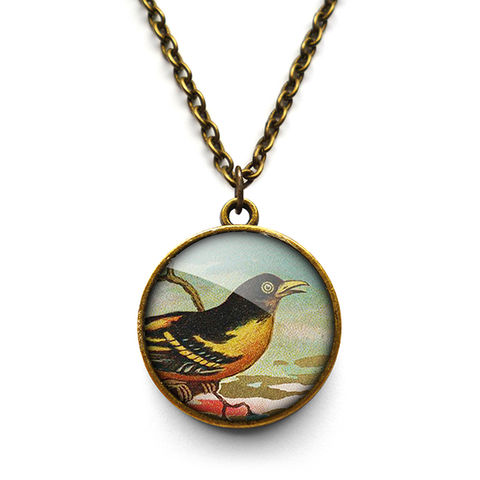 Affable,Bird,Necklace,(TB03),jewellery, jewelry, handmade, brass, necklace, vintage, bird, glass, cabochon, steampunk, victorian
