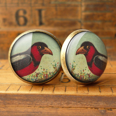 Disapproving,Bird,Cufflinks,(TB09),jewellery, jewelry, handmade, brass, cufflinks, vintage, glass, cabochon, steampunk, victorian, red, bird