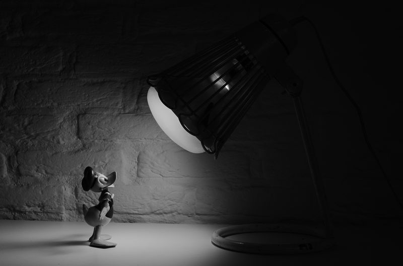 Donald Duck in the Spotlight(CARA5) - product images