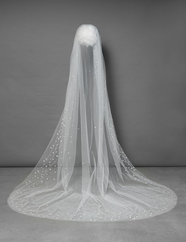Single layered falling star effect sequin edge cathedral length veil - product images  of