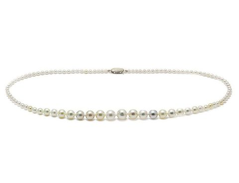 Akoya,pearl,graduated,9ct,gold,wedding,necklace,Akoya graduated pearl wedding necklace, Classic pearl wedding jewellery, Classic pearl wedding necklace, Akoya natural coloured pearl necklace, pearl jewellery for brides, classic pearl necklace, wedding necklace with pearls, akoya pearl necklace, Akoya p