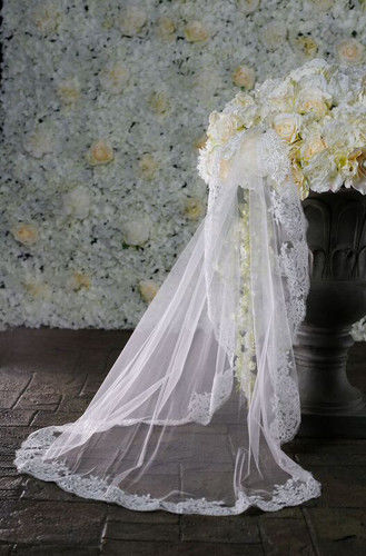 One layered lace edge wedding veil - product images  of