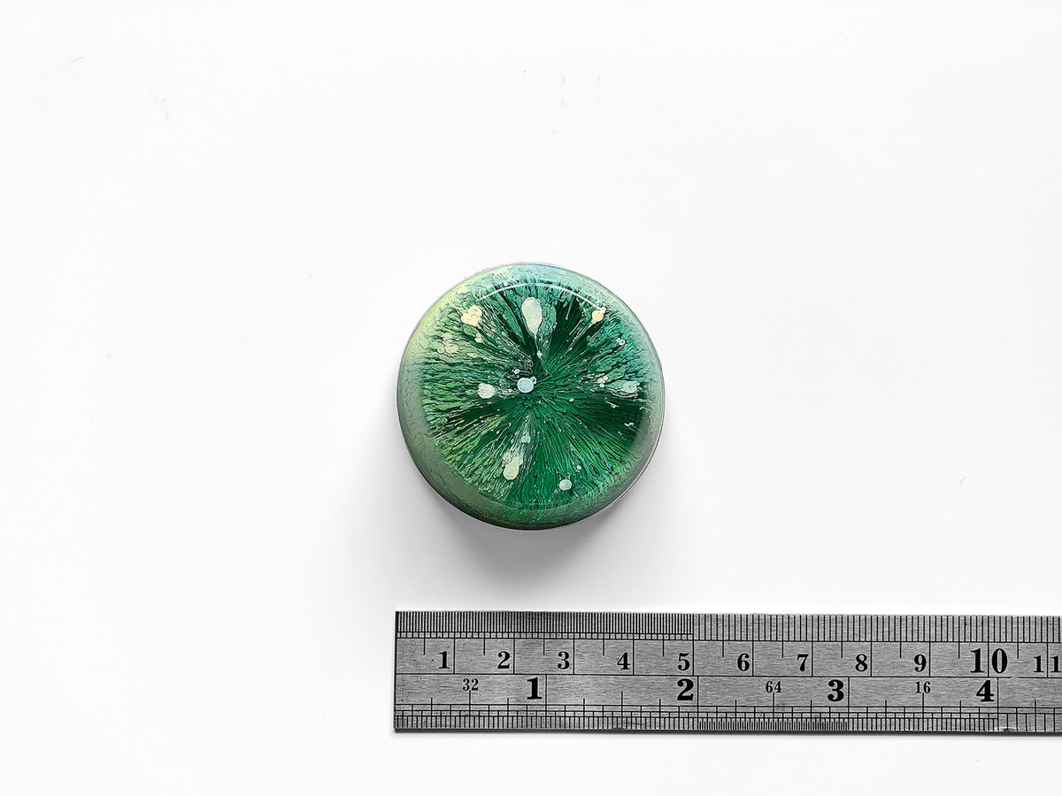 Resin Petri Magnet: IVY - product images  of
