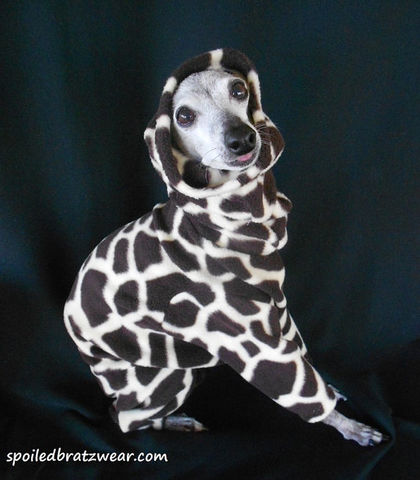 Wild,Giraffe,Warm,Fleece,Italian,Greyhound,Romper-custom,made,italian greyhound clothes, organic dog clothes, italian greyhound clothing, italian greyhound sweater, italian greyhound winter suit