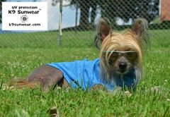 K9 Sunwear™ Cool Touch Dog Vest with UV protection - product images 1 of 11