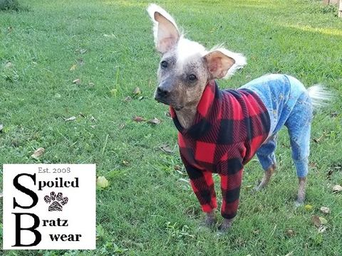 Jeans,'n,Plaid,Warm,Fleece,Dog,Romper-CUSTOM,MADE,denim dog romper, italian greyhound clothes