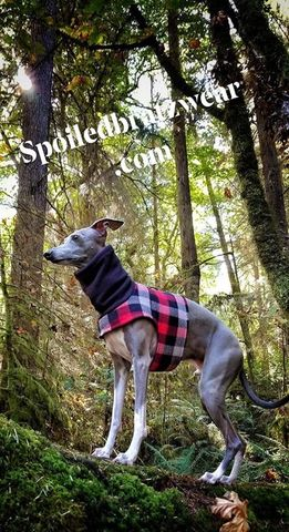 Soft,Flannel,Walking,Vest-several,options,dog walking vest
