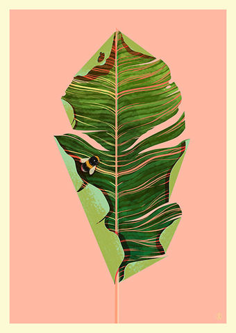 The,Tall,Palm,Giclée Print, Art Print,  Guy Mckinley Print, Colour, Botanicals, Leaves, Flora, Fauna, Palm, Palm Leaf print, Poster