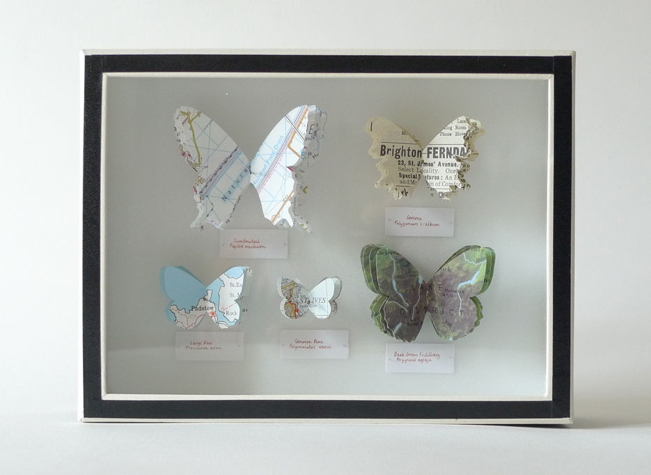 British Butterflies - product image