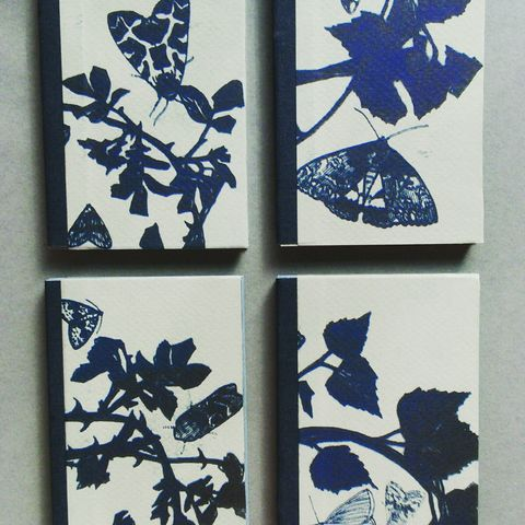 Abecedarium,artists books handmade books moths Tracey Bush