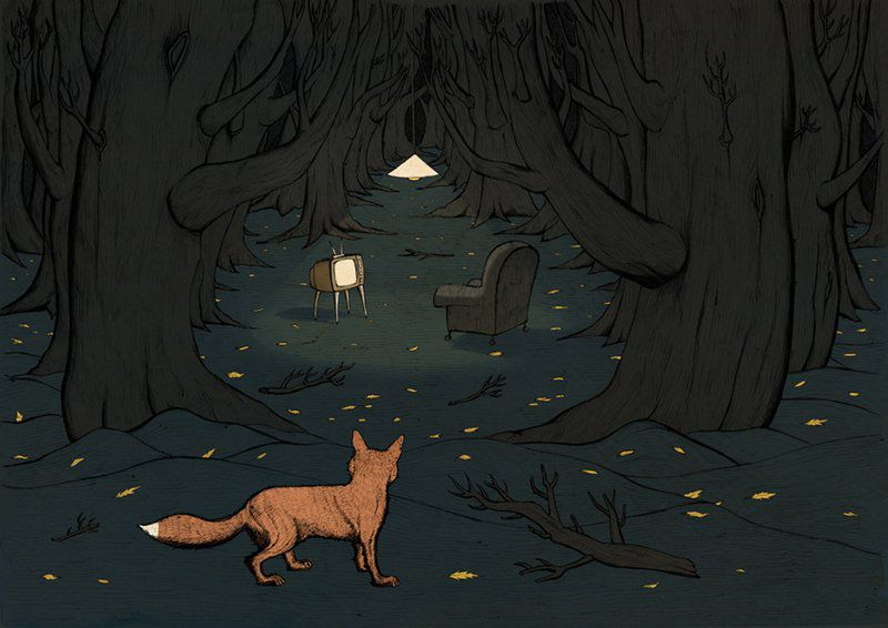 Fox In Woods by Peter Beatty (illustration print) A3+ - product images