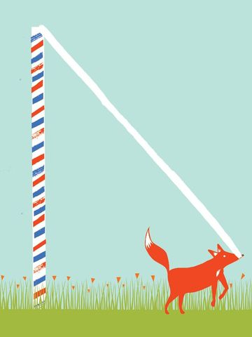 A,Foxes,Tail,6,by,Nicholas,Saunders,(5,Layer,Screen,Print),Nick, Nicholas, Saunders, Artist, Illustrator, Foxes, Tail, Allotment, Series, Screen, Print, Illustration, Art, Shop, Sale, Manchester, Column, Arts, Agency, Birmingham, London