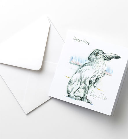 Winter,Hare,Cards,Pack,Winter Hare, Edwyn Collins Drawings, Christmas Cards