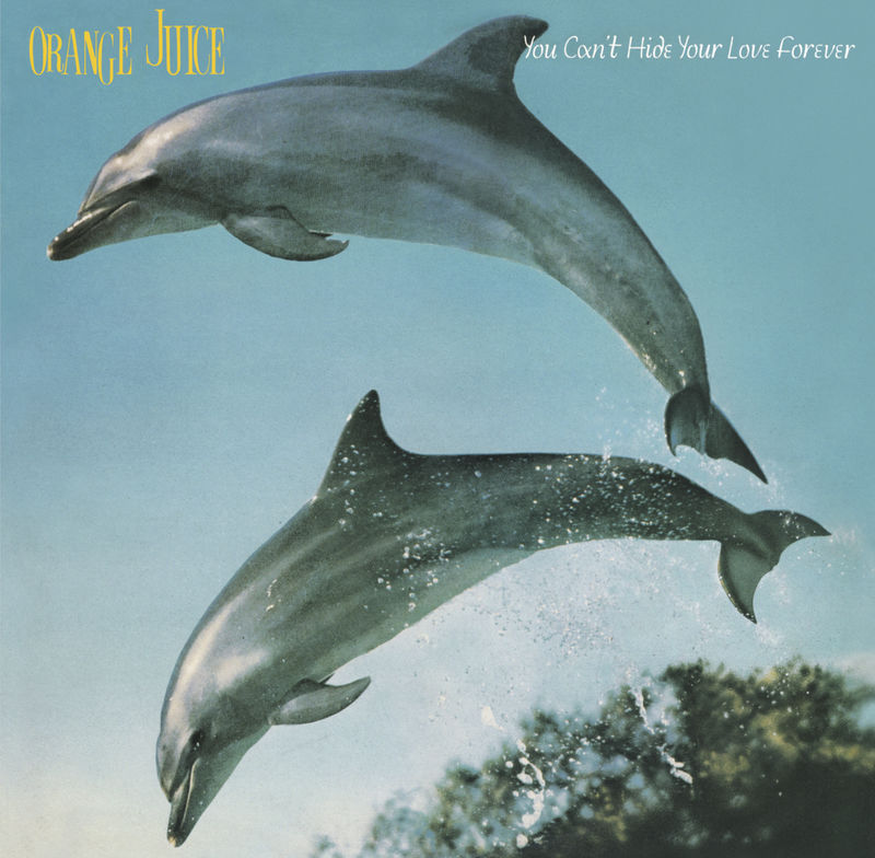 Orange Juice: You Can't Hide Your Love Forever CD - product image