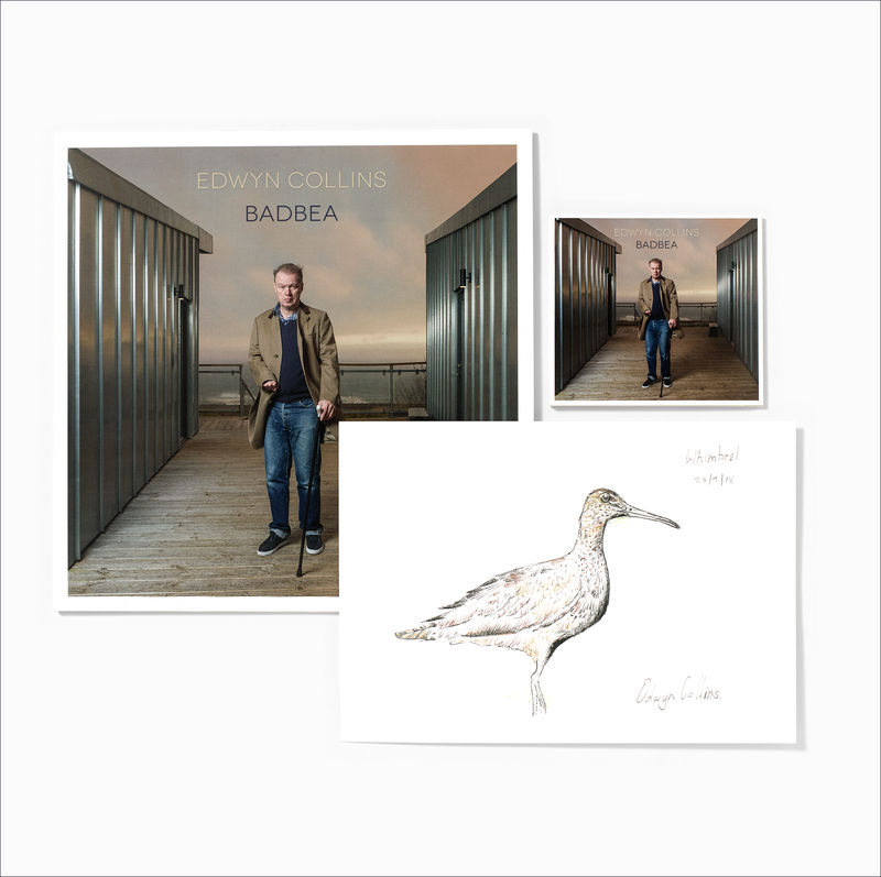 Edwyn Collins: Badbea LP + CD + A4 Whimbrel Giclée (with A4 Badbea Lyrics Letterpress Print) - product image
