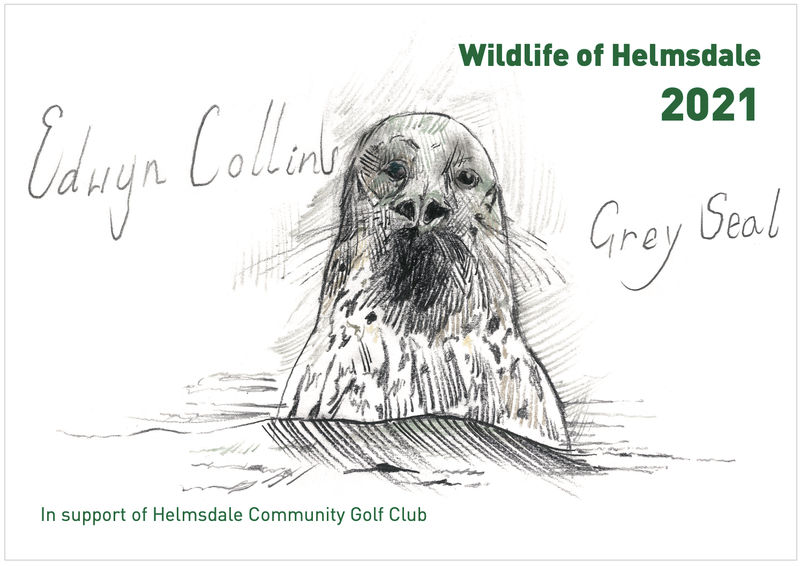 Wildlife of Helmsdale - 2021 Calendar - product image