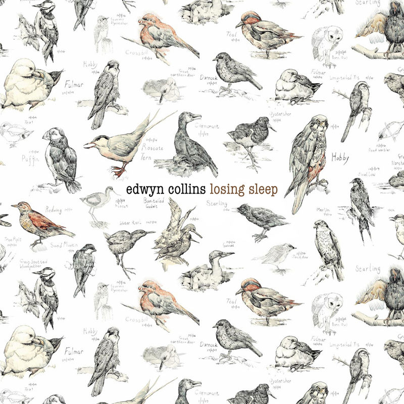 Edwyn Collins: Losing Sleep Double LP (with free CD) - product image