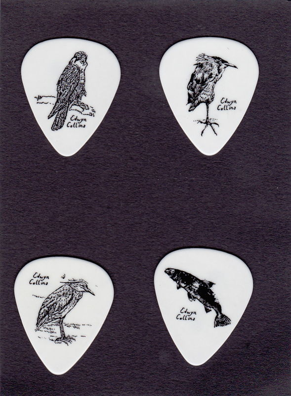 Wildlife Guitar Plectrums - product image