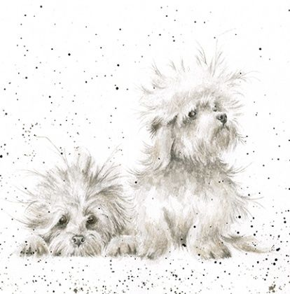 The,Best,of,Friends,Dog,Blank,Greetings,Card,buy dog greetings cards online, dog friends card, terrier birthday cards, terrier card, buy dog cards online, cards with dogs, dog birthday card, birthday cards with dogs,, lovely dog card