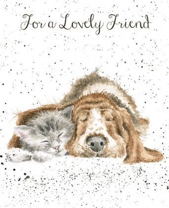 Lovely,Friend,Dog,and,Kitten,Card,buy dog greetings cards online, buy dog birthday cards online, friend cards, cards for special friends, lovely friend cards, cat card, kitten cards, hound card, basset hound card, cards with dogs, cards with cats, cards for warm wishes