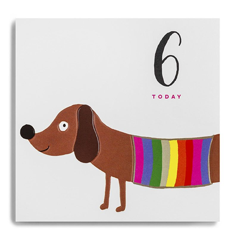 Sausage Dog 6 Today Birthday Card  - product images