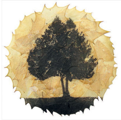 Tree,&,Leaves,Greetings,Card,-,Perfect,Autumnal,buy autumnal greetings cards online with trees, buy cards with trees online, buy holly leaf cards online, buy cards with leaves online, buy buckmaster & french cards online etchings on leaves of trees