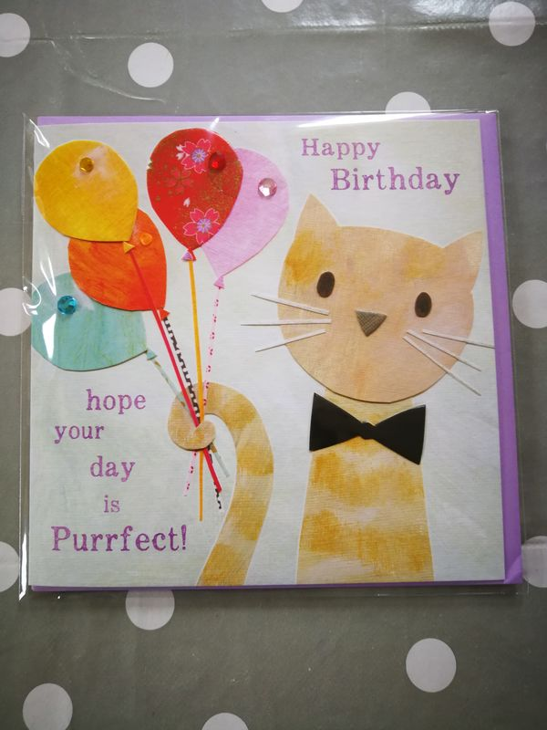 Cat & Balloons Purrfect Birthday Card - product images  of