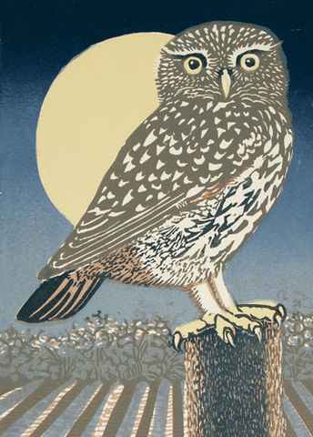 Owl,&,Moon,Blank,Greetings,Card,buy owl blank greetings cards online, buy owl and moon cards online, buy little owl bird cards online, buy blank art greetings cards with birds online