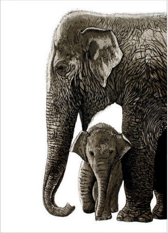 Elephants,Greetings,Card,buy  elephant blank greetings cards online, buy elephants cards online, buy animal cards online with elephantss, buy new baby card with elephants online, buy blank art greetings cards with nature and animals  online, buy jungle cards with elephant