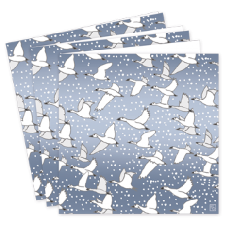 Pack,Of,Snow,Goose,Christmas,Cards,-,Emily,Burningham,buy emily burningham christmas cards online, buy luxury christmas cards online with birds, snow goose beautiful packs of christmas cards, christmas cards for friends, family and colleauges, made in england christmas cards