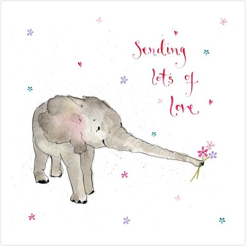Elephant,Sending,Lots,Of,Love,Card,buy greetings cards with animals online, buy sending lots of love cards online, buy cards for warm wishes congratulations with elephant, new baby card with elephant, pregnancy news card with elephant,  buy elephant cards online, buy elephant cards for spe