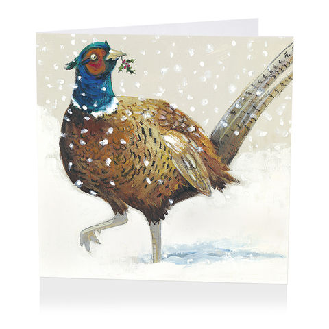 Pack,Of,Festive,Pheasant,Christmas,Cards,-,Shelter,Charity,buy shelter charity christmas cards online, buy luxury christmas cards online with birds, buy pheasant christmas cards online, buy pack of christmas cards with pheasants, buy animal and bird christmas cards online