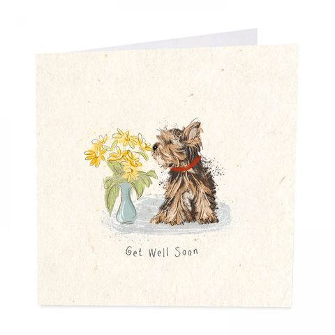 Dog,&,Flowers,Get,Well,Soon,Card,buy dog get well soon card online, buy pretty yorkshire terrier dog cards online, buy dog and flowers get well soon card for him her unisex, feel better soon cards, get well soon cards for females with dog pet flowers,