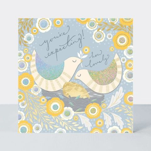 Birds,You're,Expecting,Happy,Pregnancy,Card,buy you're expecting birds and nest card online, buy mum to be card online, buy parents to be card online, buy happy pregnancy cards online with birds and flowers, pretty you're expecting mum to be cards with flowers and birds, cards for spring,
