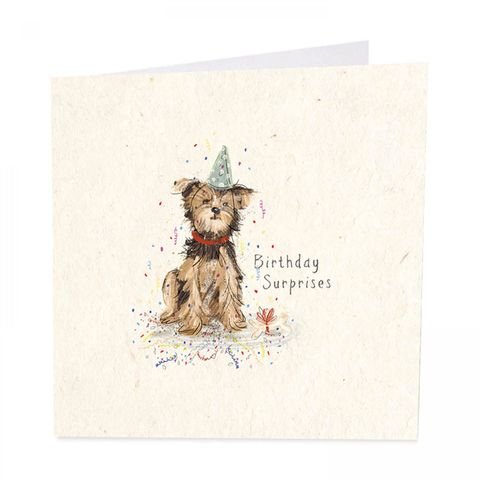 Dog,&,Bone,Happy,Birthday,Card,buy dog birthday card online, buy birthday card with dogs terrier Yorkie online, buy dog and flowers birthday cards online