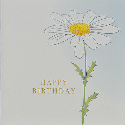 Botanical,Daisy,Happy,Birthday,Card,buy birthday cards for her online, buy female birthday cards with flowers online, buy floral birthday card for her online, buy birthday cards with flowers online, buy floral daisy birthday cards online, buy gender neutral birthday cards online, buy birthd