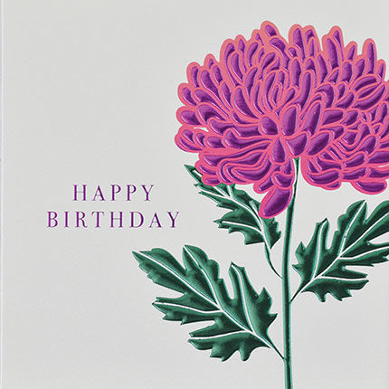 Botanical,Pink,Chrysanthemum,Happy,Birthday,Card,buy birthday cards for her online, buy female birthday cards with flowers online, buy chrysanthemum card online, buy floral birthday card for her online, buy birthday cards with flowers online, buy floral daisy birthday cards online, buy gender neutral bi