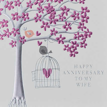 To,My,Wife,Happy,Anniversary,Pink,Birds,Card,-,On,Our,buy on our wedding anniversary card online for my wife from husband from wife, special wife happy anniversary card, birds and birdcage happy wedding anniversary cards, special anniversary cards with pink birds birdcage tree heart