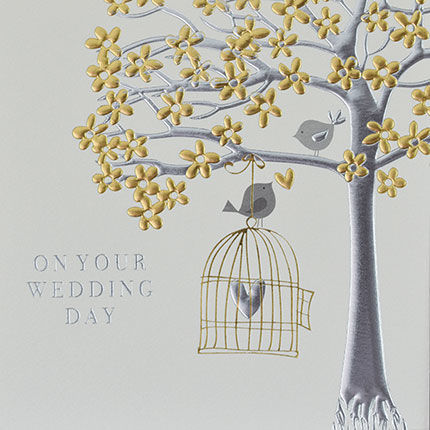 Birds,&,Birdcage,On,Your,Wedding,Day,Card,buy on your wedding day card online with birds birdcage,, special couple happy wedding day card, bird and birdcage happy wedding day cards, special friends bride and groom wedding cards with birds birdcage, mr and Mrs mr and mr  Mrs and Mrs cards