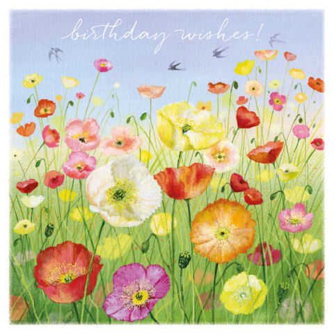 Icelandic,Poppies,Birthday,Card,-,Lucy,Grossmith,Buy poppy birthday card for her online, buy pretty flowers birthday cards for females online, buy garden birthday cards, buy summer birthday card with flowers, buy floral birthday cards for her, buy Lucy Grossmith card online