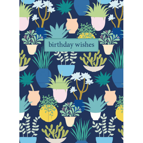 House,Plants,Birthday,Wishes,Card,Buy house plants birthday card for her online, buy pretty pot plants birthday cards online, buy plant and flowers birthday cards, buy contemporary birthday cards for her online, , buy floral birthday cards for her