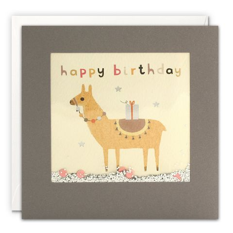 Grey,Shakies,Llama,and,Present,Happy,Birthday,Card,buy shakies birthday cards online, buy llama birthday cards online for him her kids child unisex, buy cute animal birthday cards online, buy gender neutral birthday cards online, buy llama and present birthday cards online, buy pink cute birthday ca