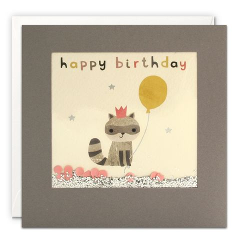 Grey,Shakies,Racoon,and,Balloon,Happy,Birthday,Card,buy shakies birthday cards online, buy racoon birthday cards online for him her kids child unisex, buy cute animal birthday cards online, buy gender neutral birthday cards online, buy racoon and balloon birthday cards online, buy pink cute birthday cards