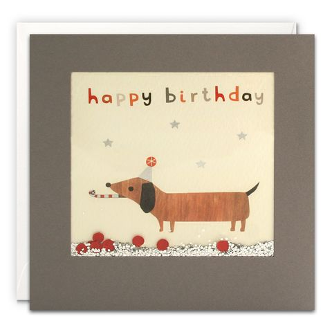 Grey,Shakies,Sausage,Dog,Happy,Birthday,Card,buy shakies birthday cards online, buy sausage dog birthday cards online for him her kids child unisex, buy cute animal birthday cards online, buy gender neutral birthday cards online, buy dachshund birthday cards online,