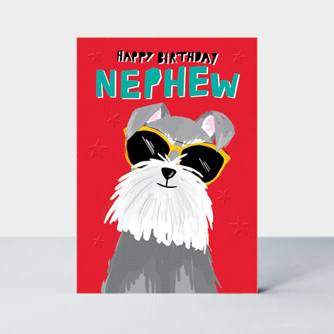 Dog,Wearing,Sunglasses,Nephew,Birthday,Card,buy nephew birthday cards online, buy birthday cards for nephews online, buy nephew birthday card online from auntie uncle aunty and uncle, buy dog birthday cards for nephew child kid, buy fun. Ute birthday cards for boys kids nephews