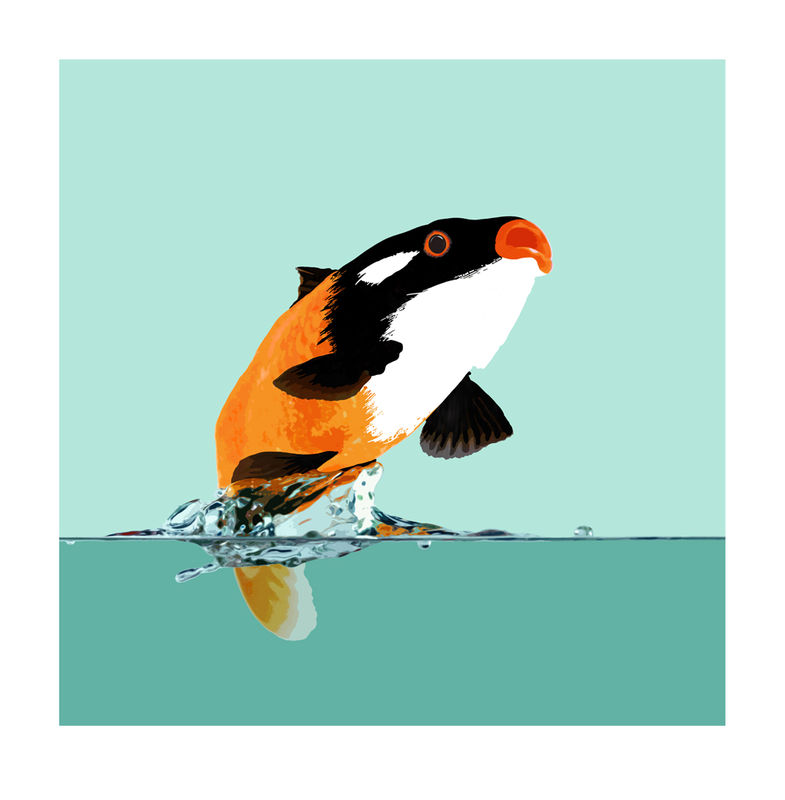 The Goldfish Who Wanted to be a Killer Whale - product images  of
